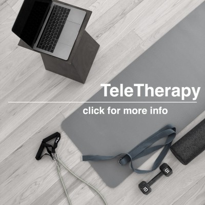 virtual pt telehealth teletherapy safe pt in your home